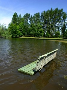 Park Bench Submerged