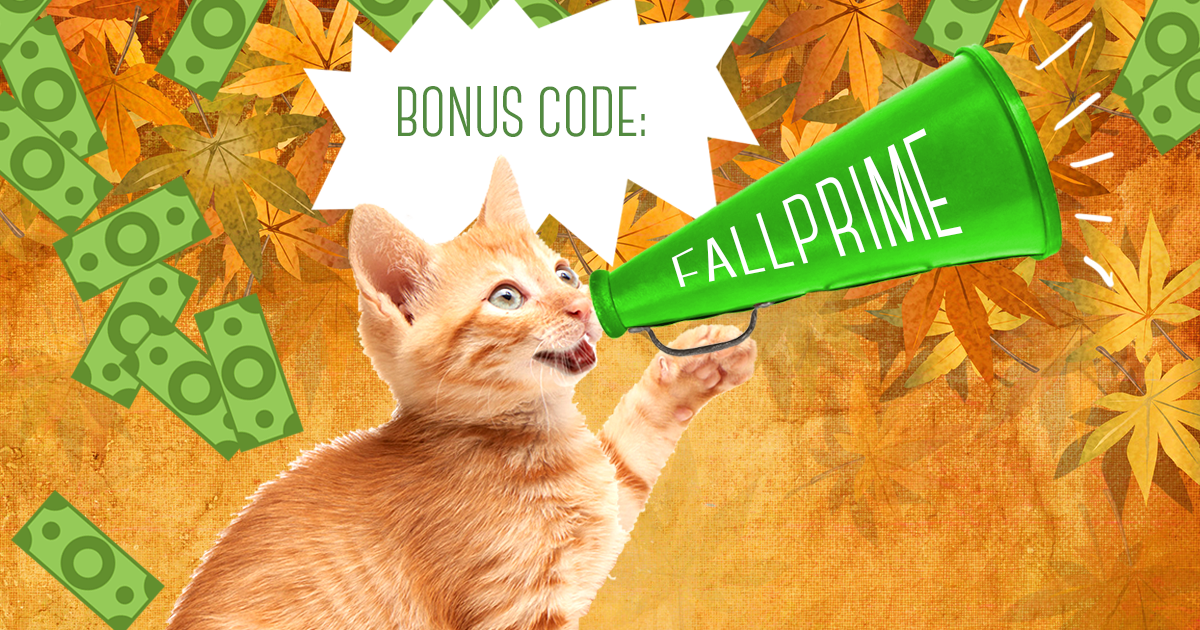 September Amazone Prime Bonus FALLPRIME | Cash4Books