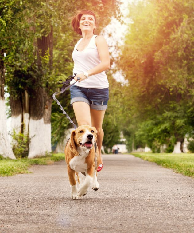 Dog walking eases owners' minds and earns you some exercise.